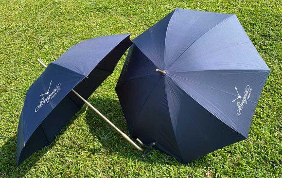 Corporate Gift - Umbrella